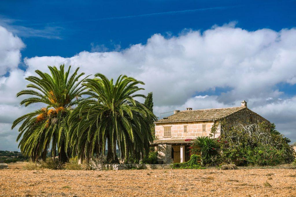 finca te koop Spanje oude Finca met palmen